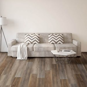 Sofa on Vinyl floor   Kirkland's Flooring